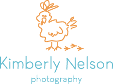 Kimberly Nelson Photography logo